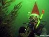 Gwiazdka w bazie nurkowej Diver24