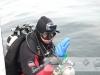 Wyprawa nurkowa ExploDive - Rusałka 2013