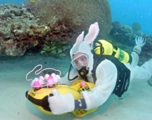 Nurkowanie z Jajem - Wielkanoc - Diver24