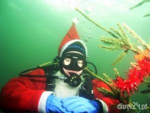 Mikołaj - Diver24