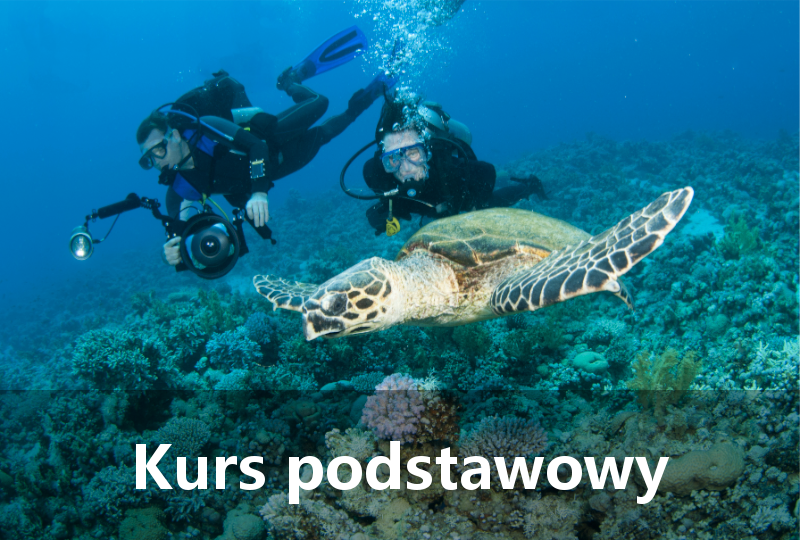 Kurs podstawowy - Diver24