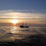 Bałtyk - Diver24 - Safari nurkowe